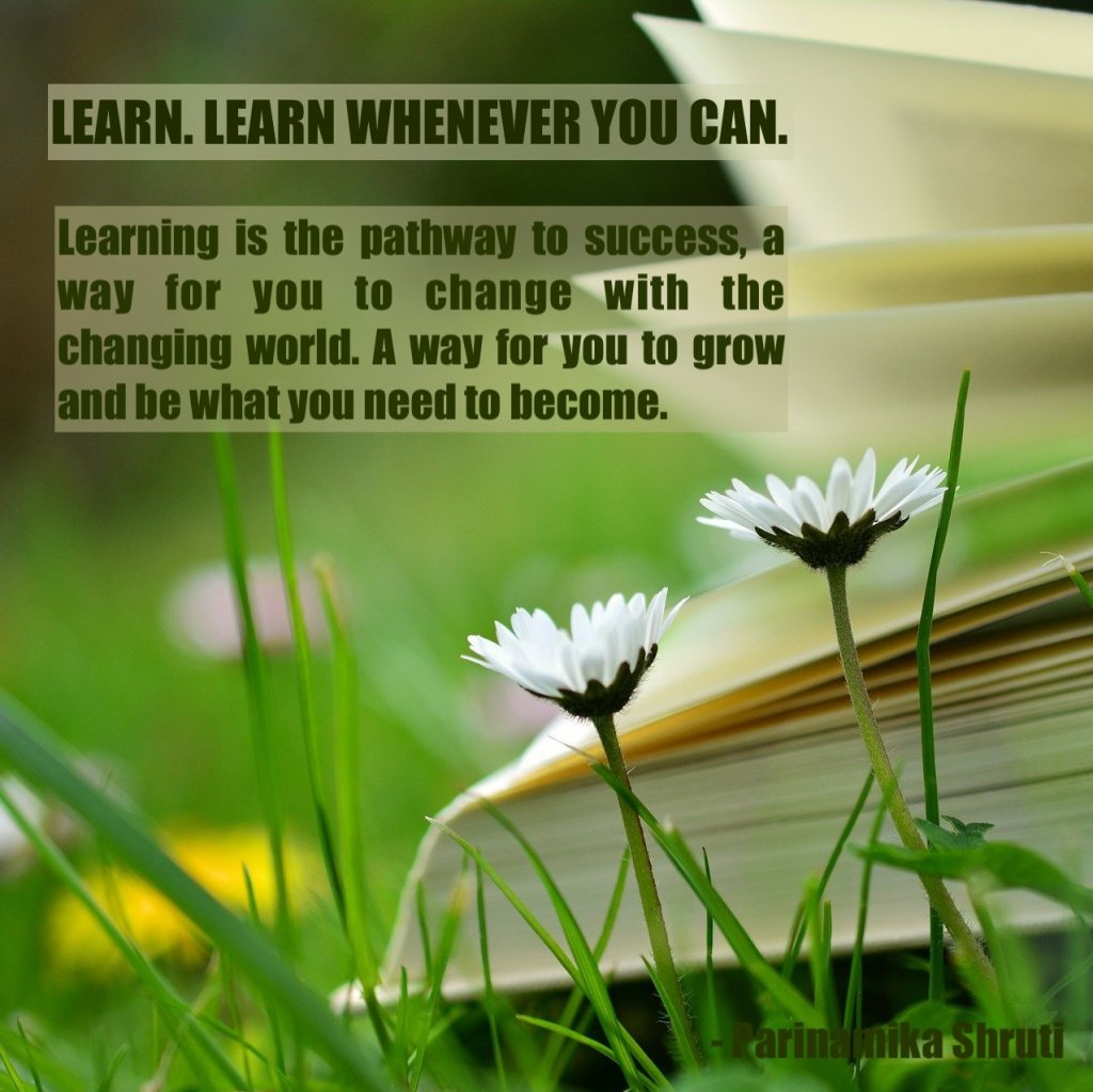 Learn, learn whenever you can. Learning is the pathway to success, a way for you to change with the changing world. A way for you to grow and be what you need to become.